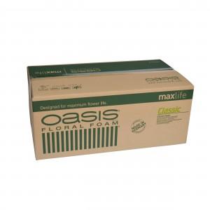 OASIS CLASSIC