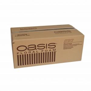 OASIS SEC